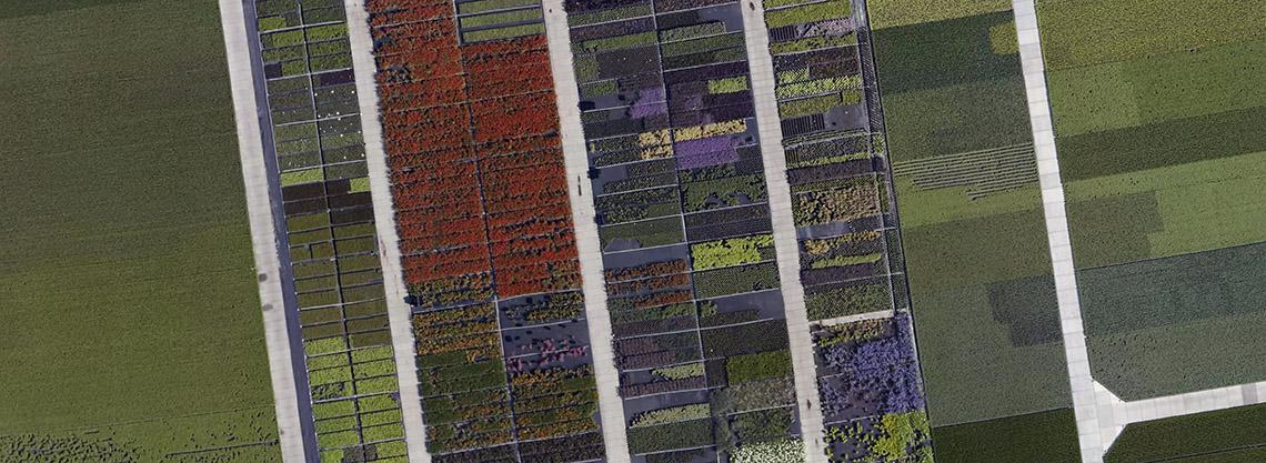 Province-N-Roads-Ortho-Photo-Mosaic-Photography-Aerial-Survey-05